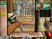 robin hood adventures shooting game online