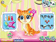 pets beauty salon game kids online free