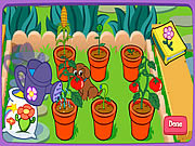doras magical garden online game